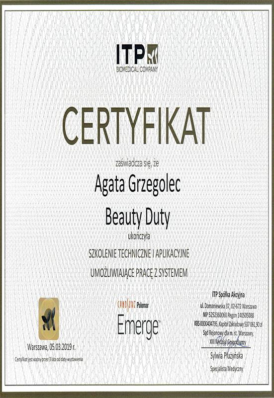 Certyfikat A. Grzegolec - Emerge
